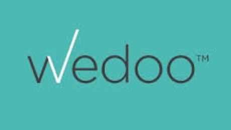 Wedoo Logo, GoBox Self Storage